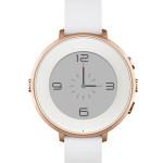 mgs-pebblewatch