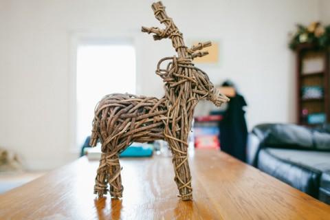 reindeer-933359
