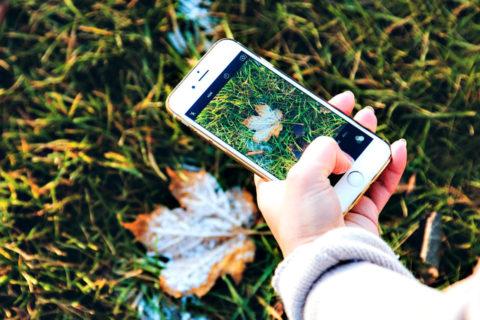 autumn-1031273_960_720